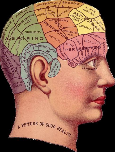 Trabaja tu memoria y estudiarás mejor