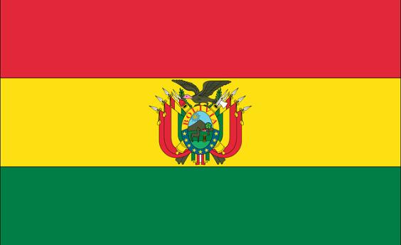 Estudiantes Bolivianos en Madrid