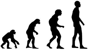 Todos somos Homo Sapiens